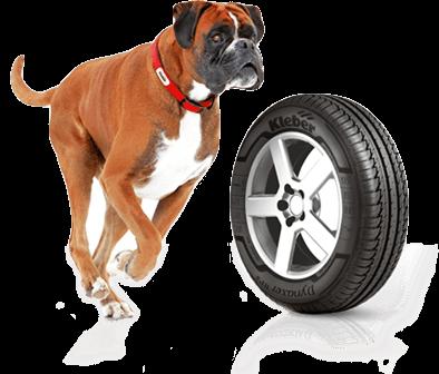 Le chien Urvic - Mascotte de la marque Kleber